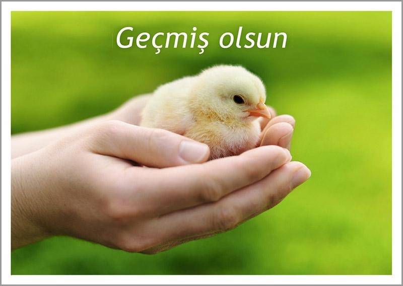 Herzlichen gluckwunsch zum geburtstag auf turkisch